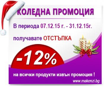 Коледна промоция -12 %
